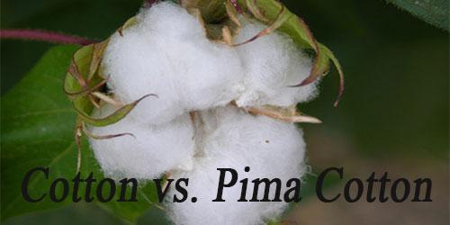 Cotton vs. Pima Cotton