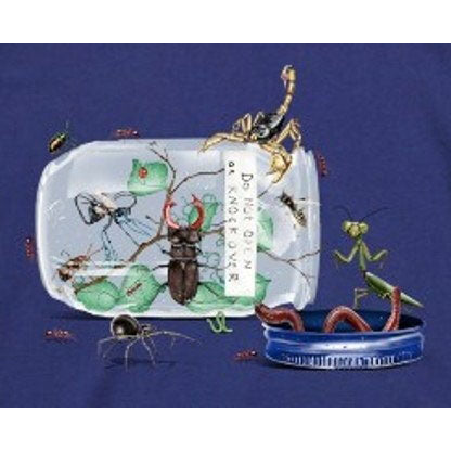 Little Boys Bug Jar Shirt by Wes and Willy
