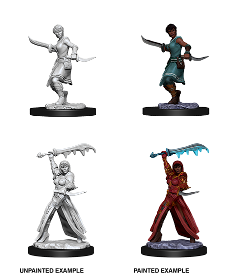 Dungeons & Dragons - Nolzur's Marvelous Miniatures: Female Human Rogue