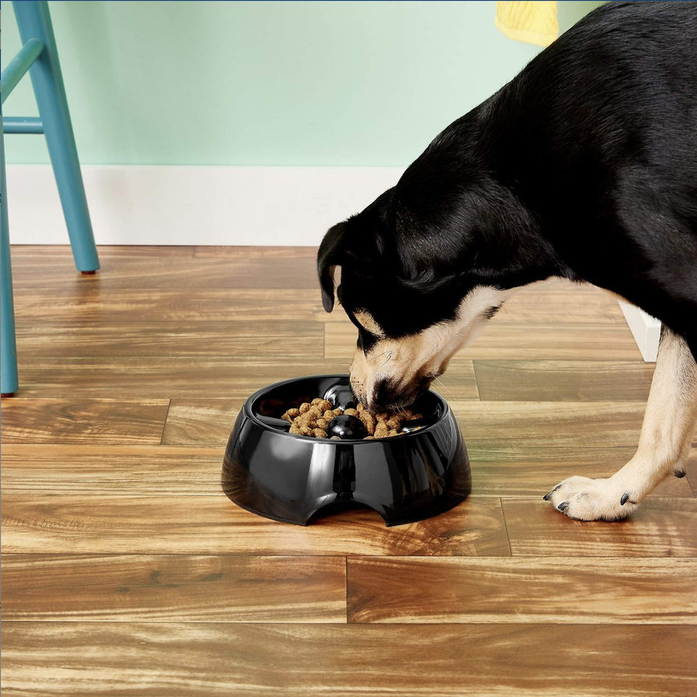 Dogit Go-Slow! Anti-Gulping Dish