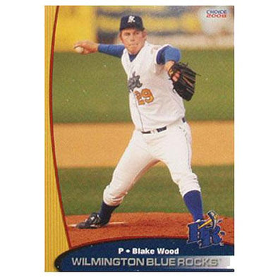 Wilmington Blue Rocks 2008 Team Set