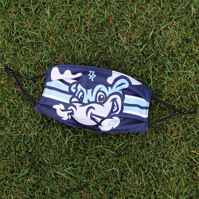 Wilmington Blue Rocks Rocky Face Mask
