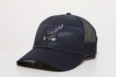 Wilmington Blue Rocks Navy Rocky USA Flag Cap