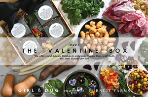 The Valentine Box 2021 (Ships Free)