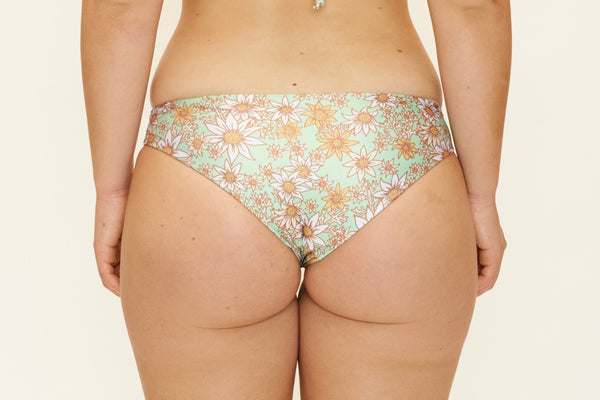 Jaki Bottoms – Flannel Flower