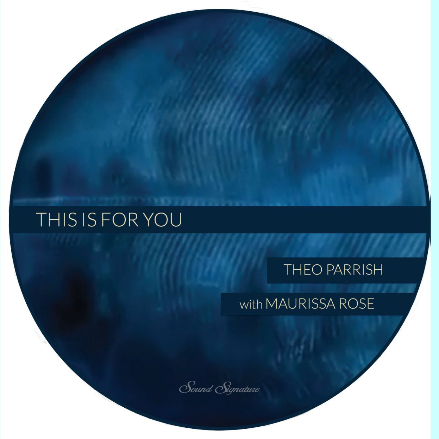 Theo Parrish With Maurissa Rose ‎ - This Is For You