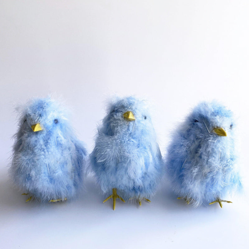 Blue Fluffy Chick Set