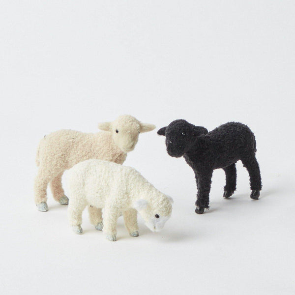 Mini Flock of Assorted Lambs