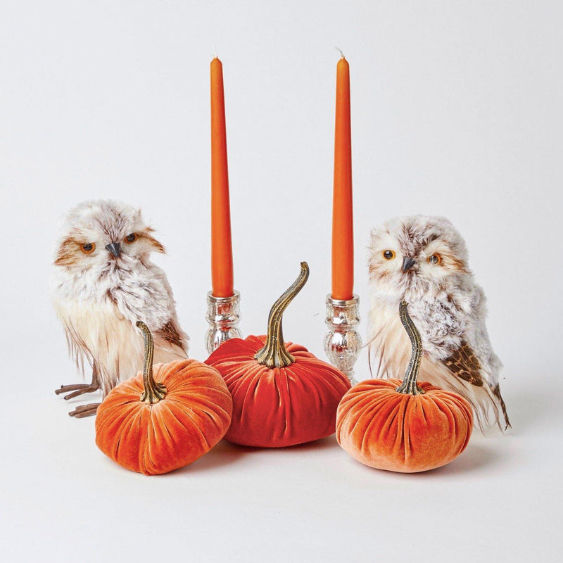 Autumnal Decoration Set