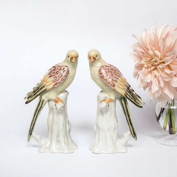 Poppy Parakeet Pair