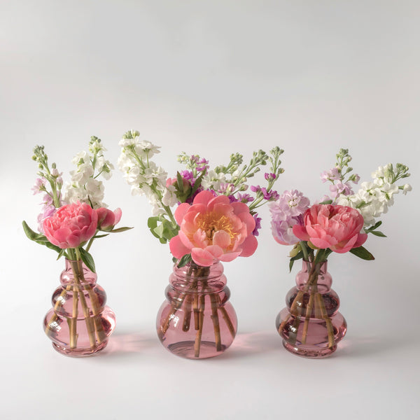 Los Angeles Bud Vase (Set of 3)
