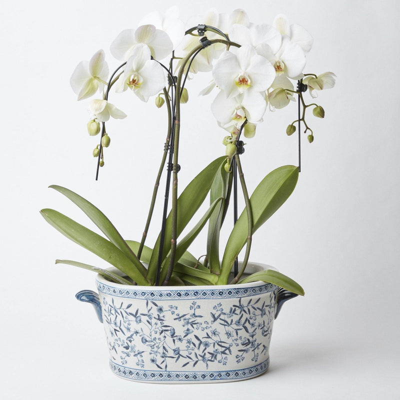 Blue and White Oval Chinoiserie Planter