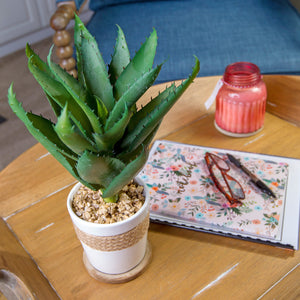 Faux Aloe Vera Plant Decor w/Braided Ceramic Pot