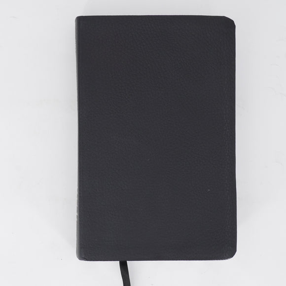 Leather/Silver Condensed Study Bible