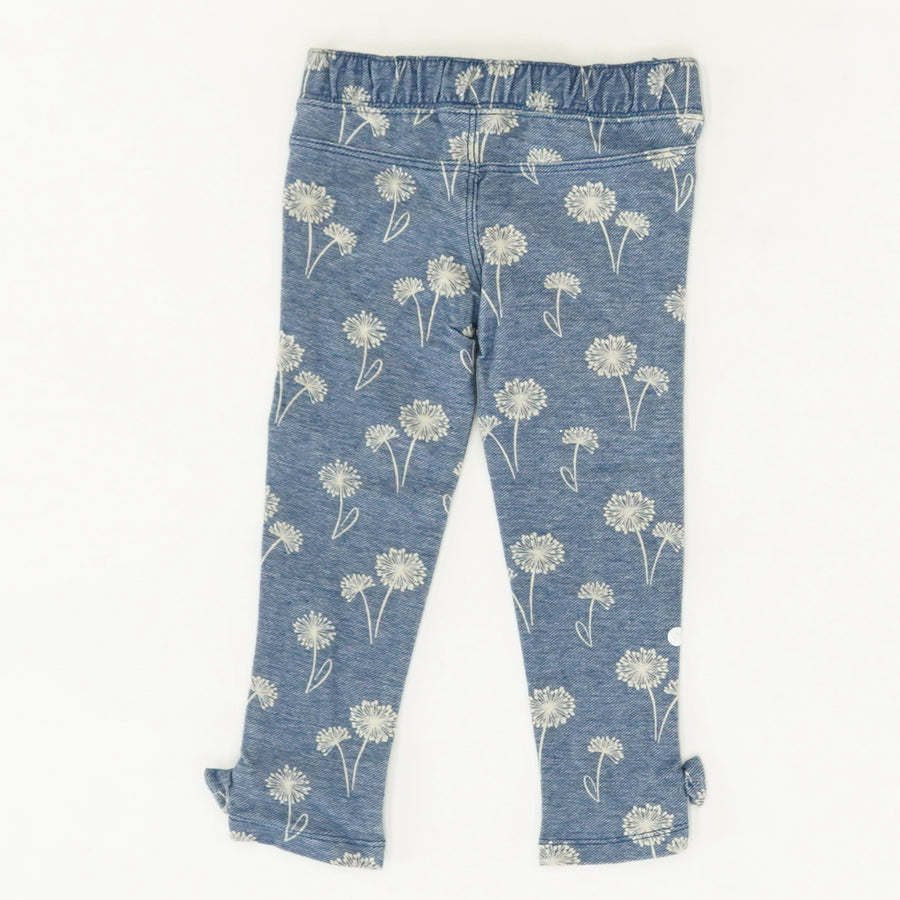 Dandelion Jeggings - Size 2T