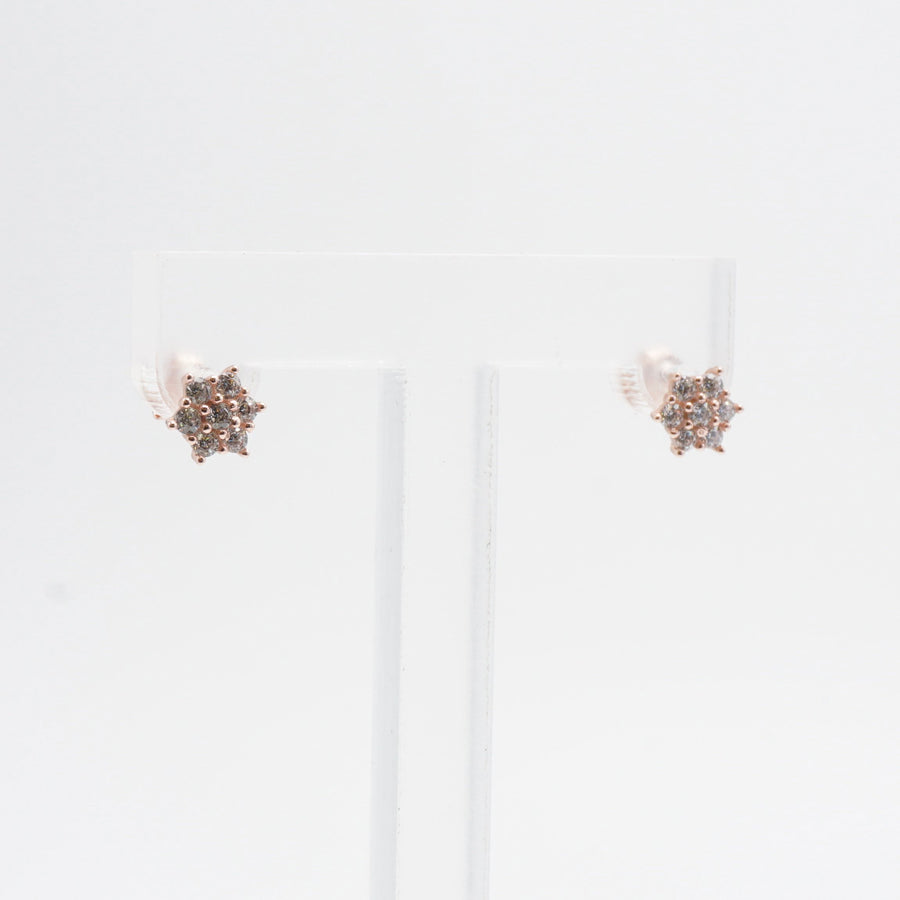 Rose Gold Plated CZ Stone Studded Earrings