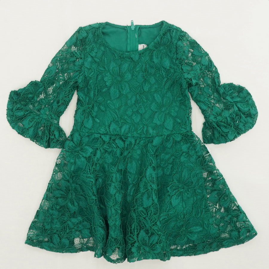 Embroidered Floral Dress Size 3T