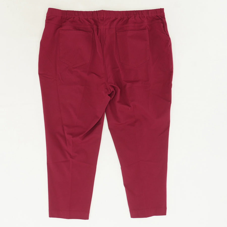 Red Solid Pull On Pant Size 28