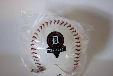 Tigers 2020 Spring Training Logo Baseball