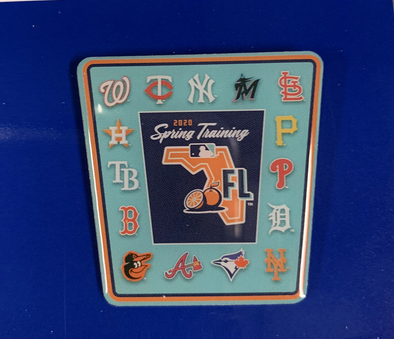 Tigers Spring Training 2020 Grapefruit League Pin