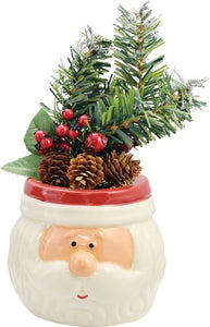 Santa Decorative Arrangement
