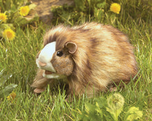 Load image into Gallery viewer, Puppet - Guinea Pig