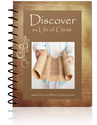 Discover the Life of Christ (Digital Download)