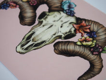 Load image into Gallery viewer, Illustrated Floral Ram Skull Postcard