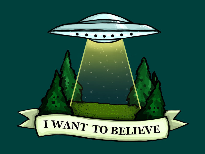 The X-Files - I Want To Believe - A4 Art Print by Hungry Designs