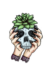 Load image into Gallery viewer, Skull Planter - Succulent - A4 Art Print by Hungry Designs