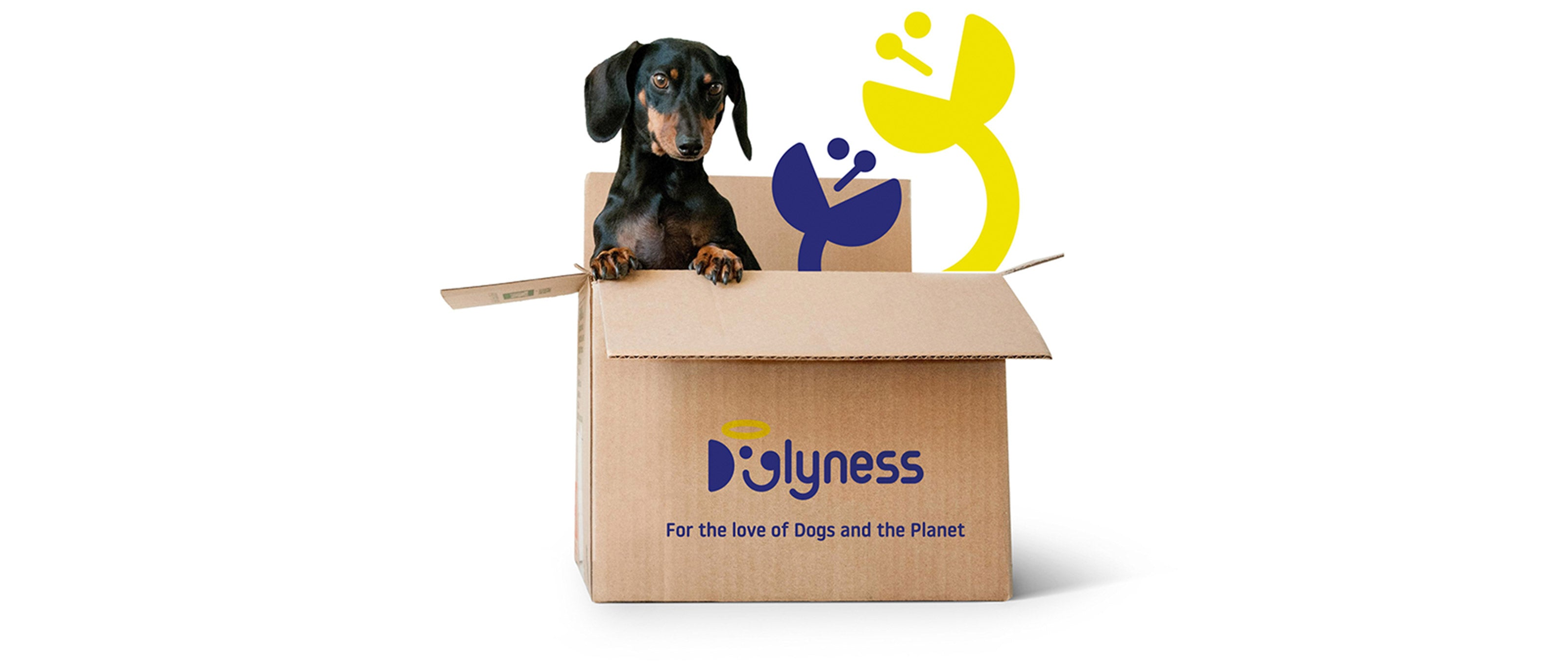 Doglyness, for the love of dogs and the planet!