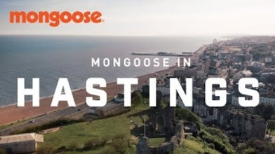 Mongoose in Hastings