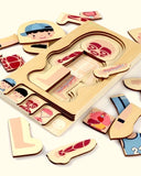 Goryeo Baby Multi-Layer Puzzle - Human Body