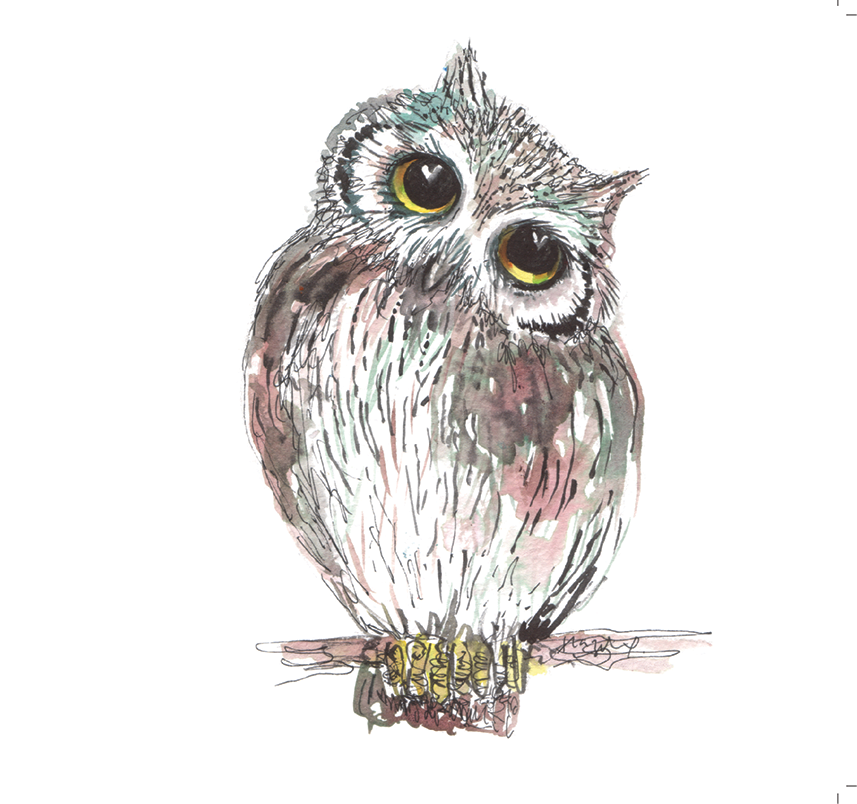 The Little Owl #Heart985 - Greeting Card