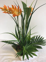 Number 1 - Orange Heliconia in a Tropical Arrangement