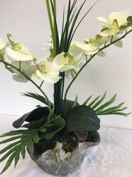 Number 2 - White Day Lily in a Tropical Setting