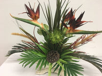 Number 3 - Brown and Marlow Bird of Paradise in a Tropical Arrangement