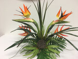 Number 6 - Orange Bird of Paradise with Yellow Heliconia in a Tropical Setting