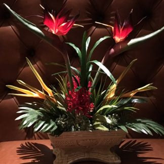 Red Bird of Paradise – Palm Tree Container