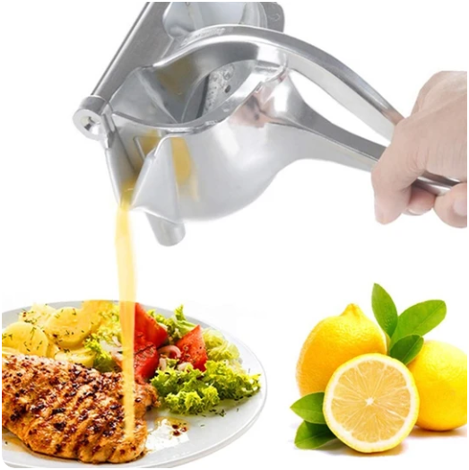 Stainless Fruit Juicer