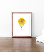 Load image into Gallery viewer, California Poppy Watercolor - Original Art Print