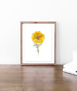 California Poppy Watercolor - Original Art Print