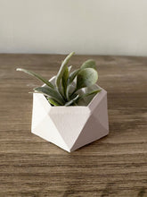 Load image into Gallery viewer, Mini Geo Air Planter - Set of 3