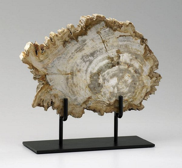 Cyan Design Medium Petrified Wood On Stand - 02599 - Chachkies