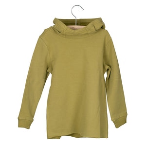 Sweater Hooded Bo Moss Green