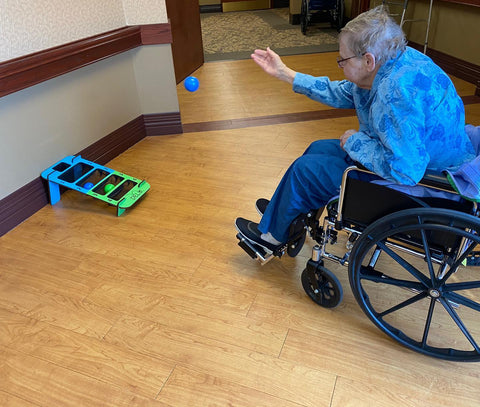 DELU great game for nursing homes and physical therapy