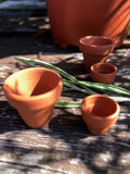 Tiny terracota pots