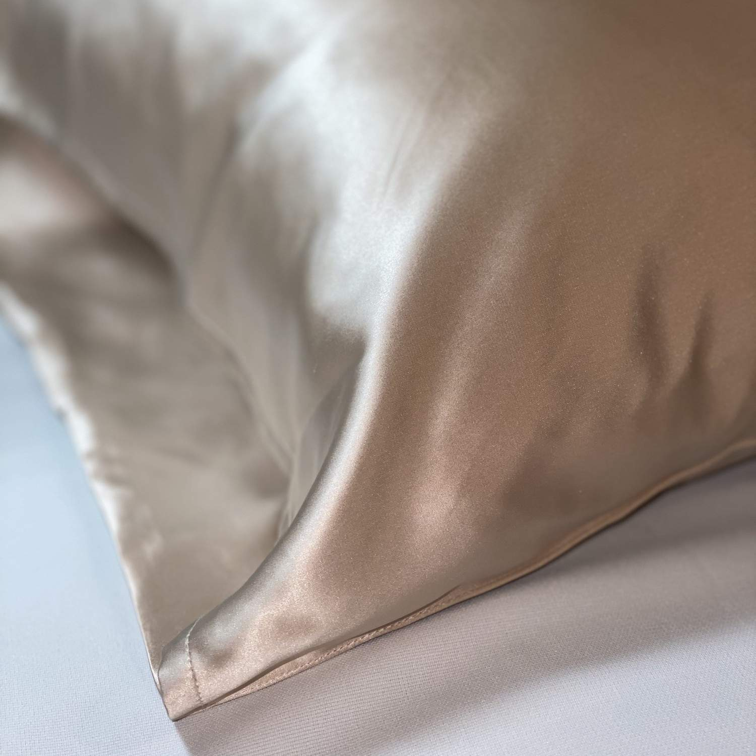 Mulberry Silk Pillow Case (Champagne)
