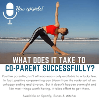 The Separation Fix Podcast Separation Divorce Coach byron bay parenting parent