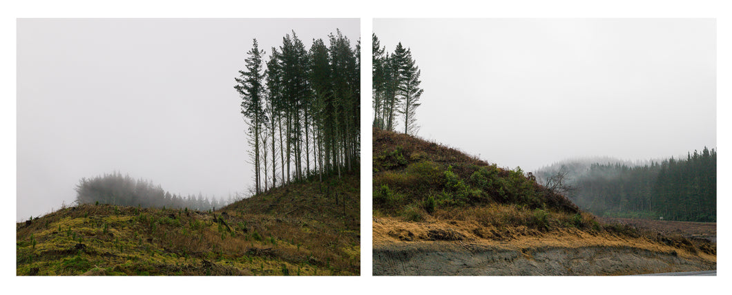 The Remembrance Project, Absence (Diptych), 2016